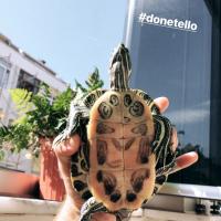 Donetello