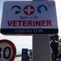 New Life Veteriner KLiniği