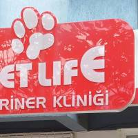 petlife veteriner kliniği